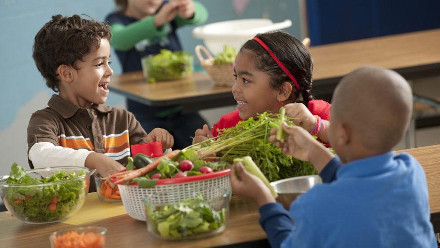 L'Università della Tuscia a supporto del Comune di Viterbo per la mensa scolastica