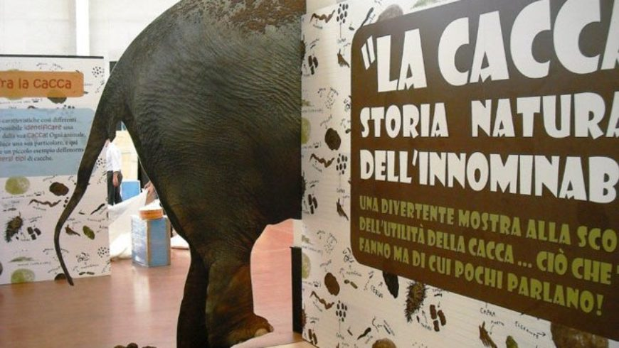 La cacca va in mostra al Bioparco di Roma: storia naturale dell'innominabile