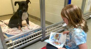 """""""Kid therapy"""": fiabe in canile dove i bimbi leggono ai cani"""
