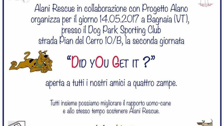 DID YOU GET IT? AMICI A QUATTRO ZAMPE A BAGNAIA (Viterbo)
