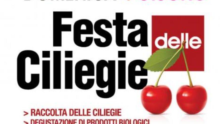 FESTA DELLE CILIEGIE (Tuscania)