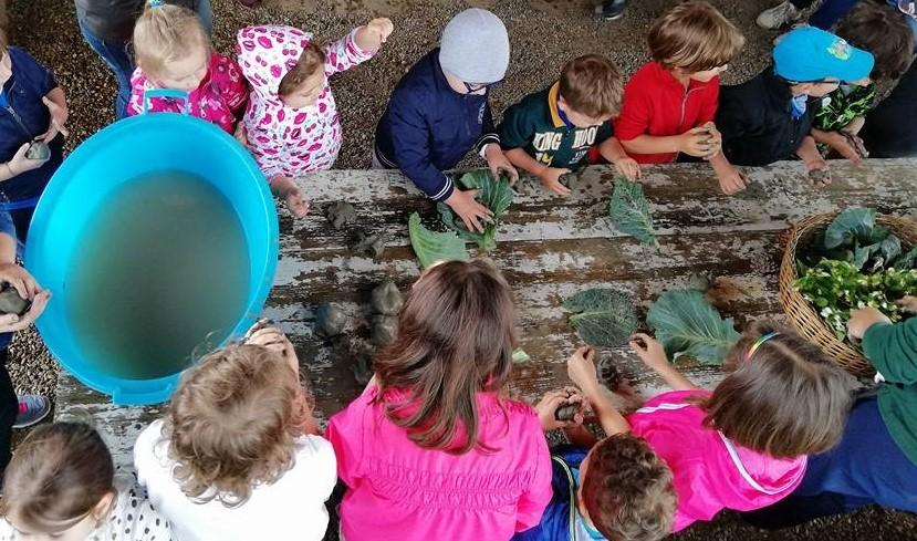 Clorophilla: la festa della natura per bambini torna il 2 e 3 ottobre